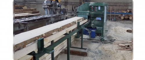 Disk multisaw machine AMS-150